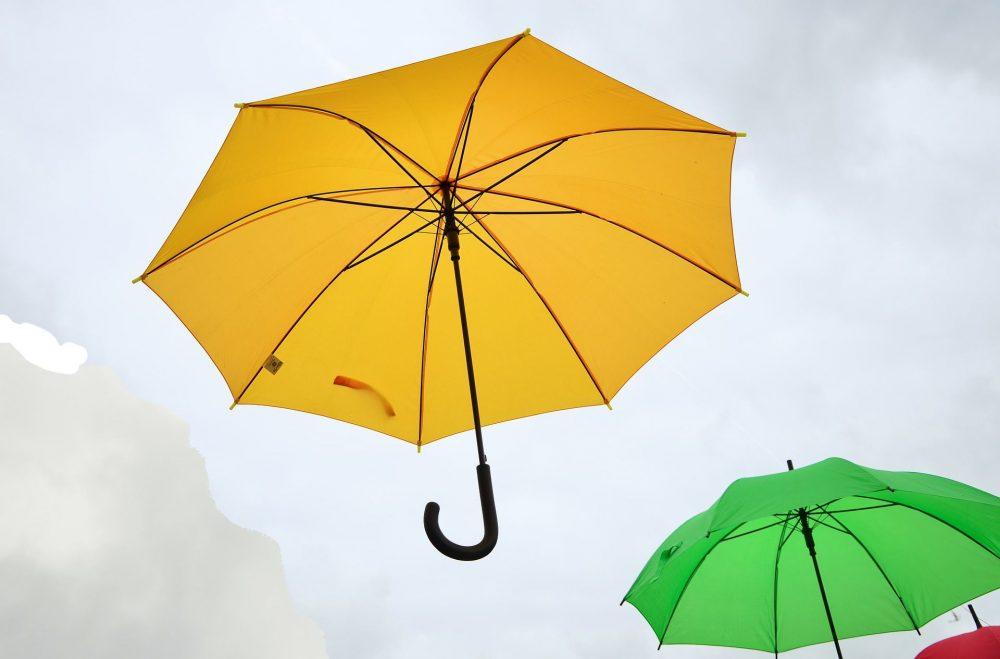 Unter dem Schirm Image